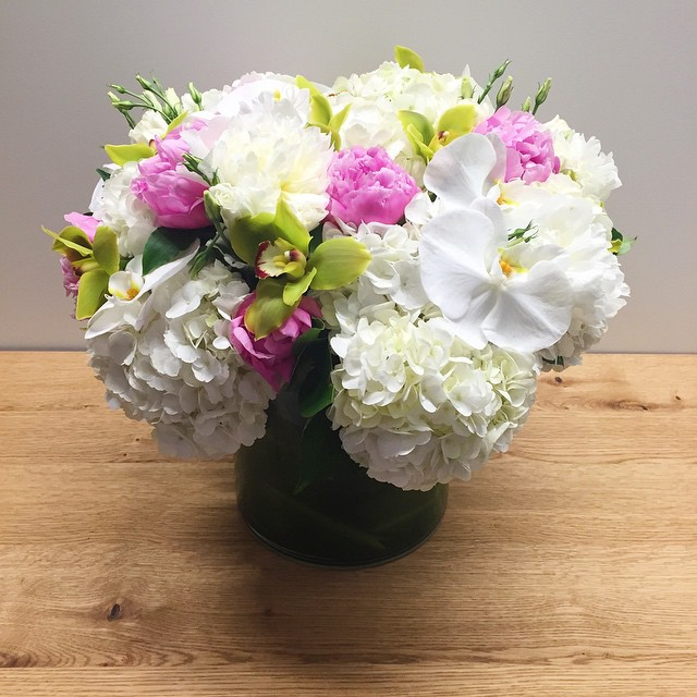 The most gorgeous blooms in our office this morning #happygirl…